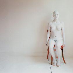 Silent Companion 1 by Ione Rucquoi